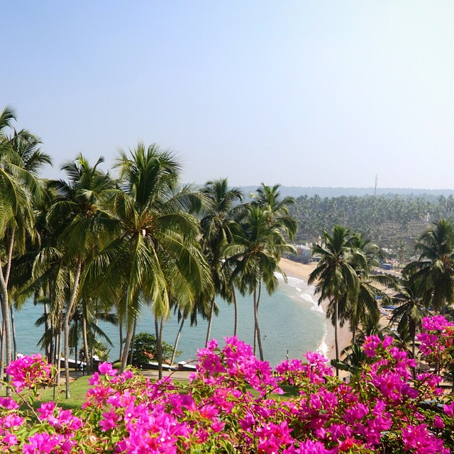 This is the first picture I took from our hotel room when we arrive in Kerala.  The Leela Kovalam is breathtakingly beautiful. It was hot out.  The food here is delicious, but buffet style, so sorry, no pics of food from here. But I highly recommend this hotel. It is gorgeous. The rooms are really nice.